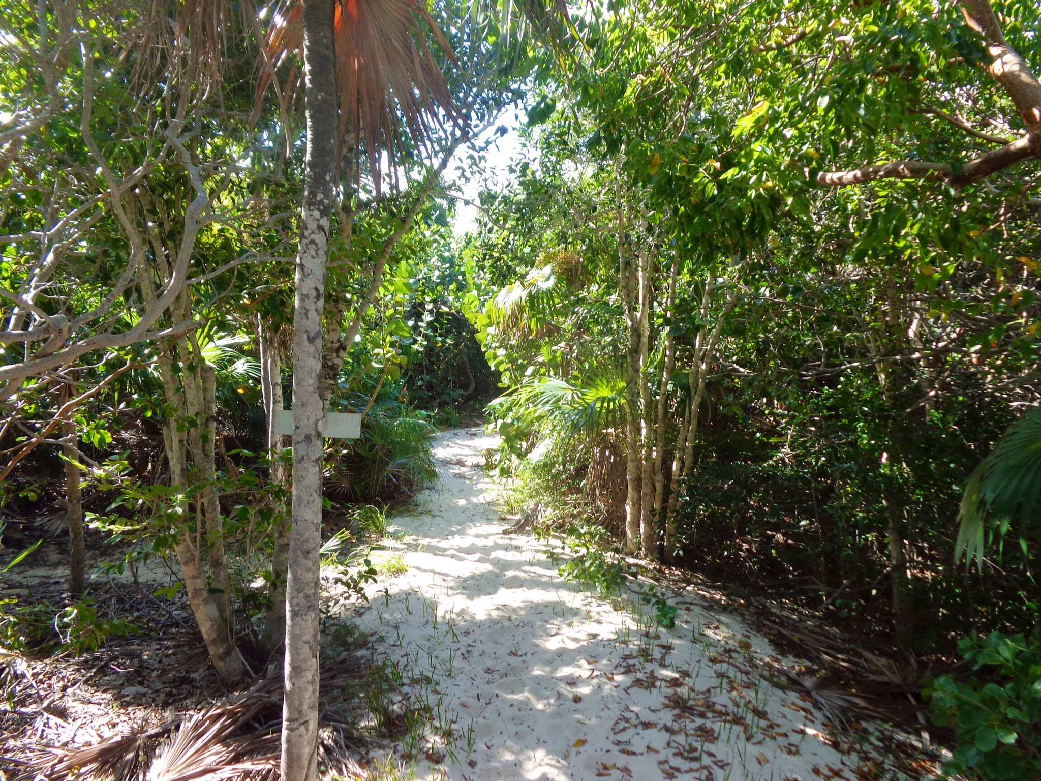 georgetown trail exuma