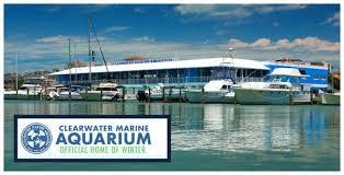 CW aquarium