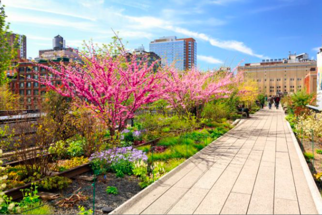 Top Reasons to Visit NYC This Spring