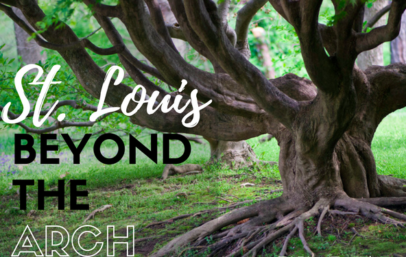St. Louis – Beyond the Arch